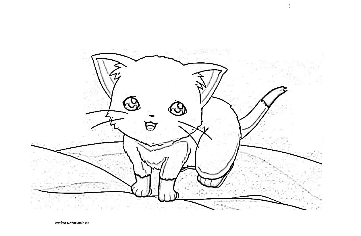 раскраски аниме котики раскрась этот мир