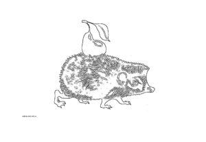 Ежик с грушей