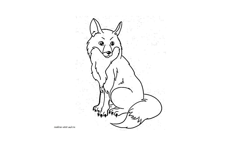 раскраски лисы раскрась этот мир