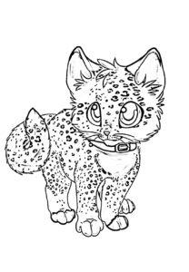 Раскраска котик аниме