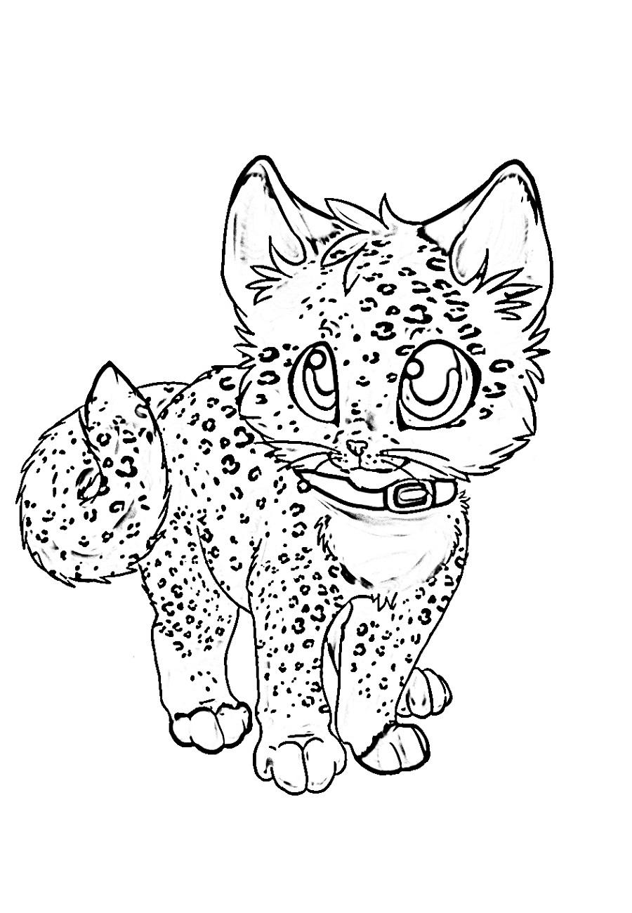 Раскраски аниме котики - Раскрась этот мир!