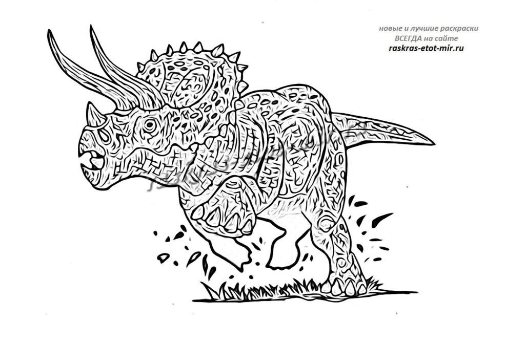 Раскраска трицератопса